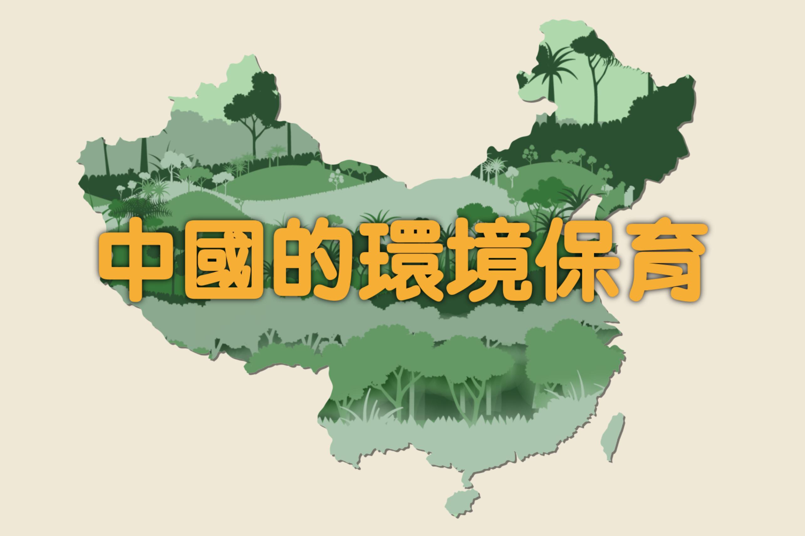 yingmukuaizhao_2020-11-05_xiawu4.01.18